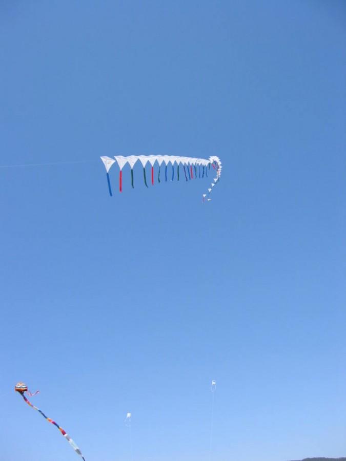41 Kites en train