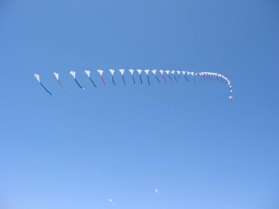 41 Kites #2