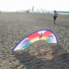 SkyHummer (the last kite that David Davies made)
