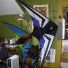 Dryin the Kites