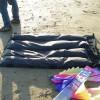 My Bag's maiden voyage @ Cannon Beach