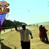 Adk bird Man kite ashok Des
