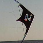 windwhip