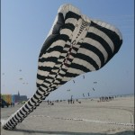 i66-daves-world-berck-art_057