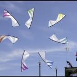 i70-kites-life_001