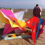 Lots of beautiful kites this year...