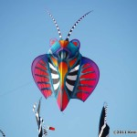 Scott Hampton kite creation...