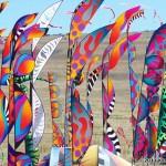 Scott Hampton wind forest at Antelope Island...