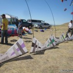 iQuad kites lined up at Antelope Island...