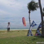 Participants enjoy all kinds of kites...