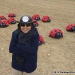 i79-daves-uiseong-17