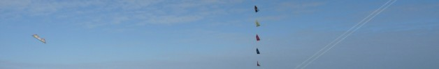 Stunt kite fliers