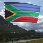 Festival Kites