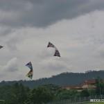 i75-monkey-malaysia_002