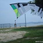 i75-monkey-malaysia_014