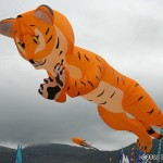 Peter Lynn tiger kite