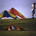 kites19