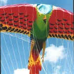 Inflatable Bird