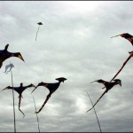 S-Pteradactyls in flight o~