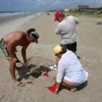 Sand_Anchor