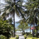 Sibu Path to Albert Beach