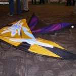 Easy launching kite from Flying Wings