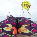 Big beautiful kites...