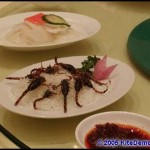 opening ceremony banquet - scorpion appetizer