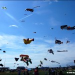 Stunning amounts of single line kites