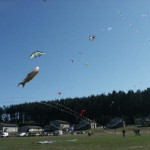 whidbey03-sat064