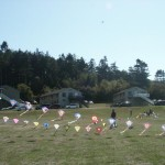 whidbey03-sat069