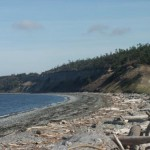 whidbey03-sun018