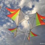 Ichiban by Blue Moon Kites