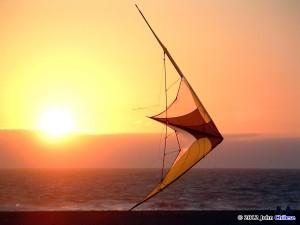 Mamba by Blue Moon Kites