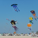 Show kite display at Great Lakes Kite Festival