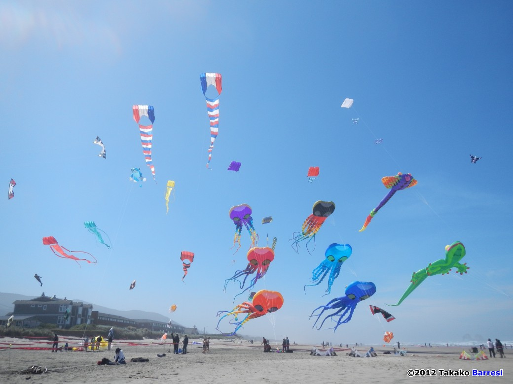 rockaway beach kite festival kl archive kitelife great weather on board it looked like it was going to be a picture perfect day a light breeze from the west looked promising and it was early yet