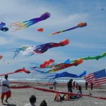 Flying kite creations of all kinds