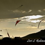 Sunset - camp and kite