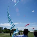 Patriotics Kites