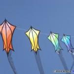 KiteOberFest - Robert Brasington kites! KiteOberFest