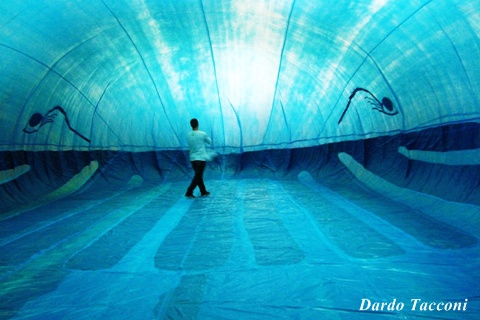 Dardo Tacconi indoor inside the whale balloon