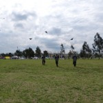 Freaks Team kites in formation
