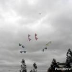 Megateam Revolution kites