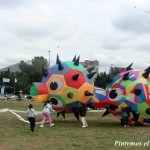 Inflatable balls at the kite festival