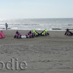 Revolution kites at rest