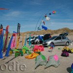 Kite fliers base camp