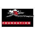 Main Pages – Drachen Foundation