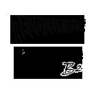 Home Page – Revolution Kites