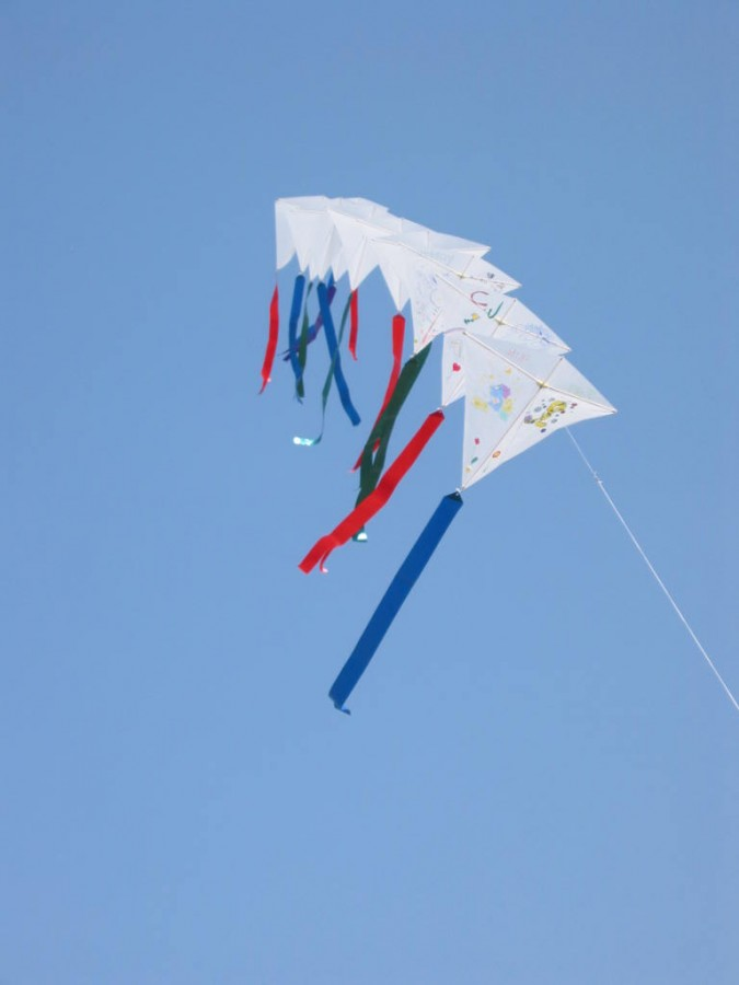 10 kite train