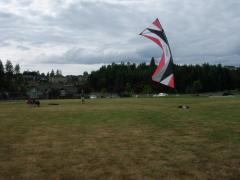Rev Flown in Puyallup Washington